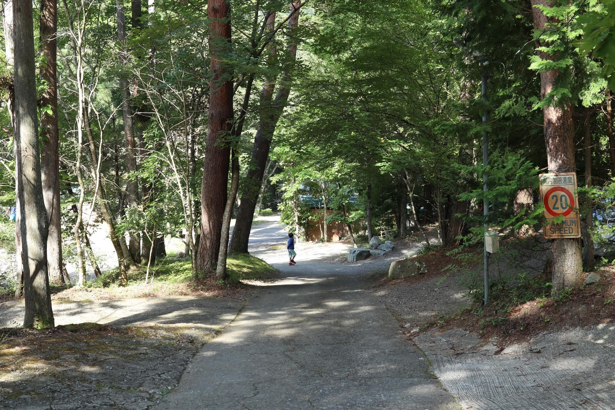 道志 オートキャンプインむじな 林間サイト