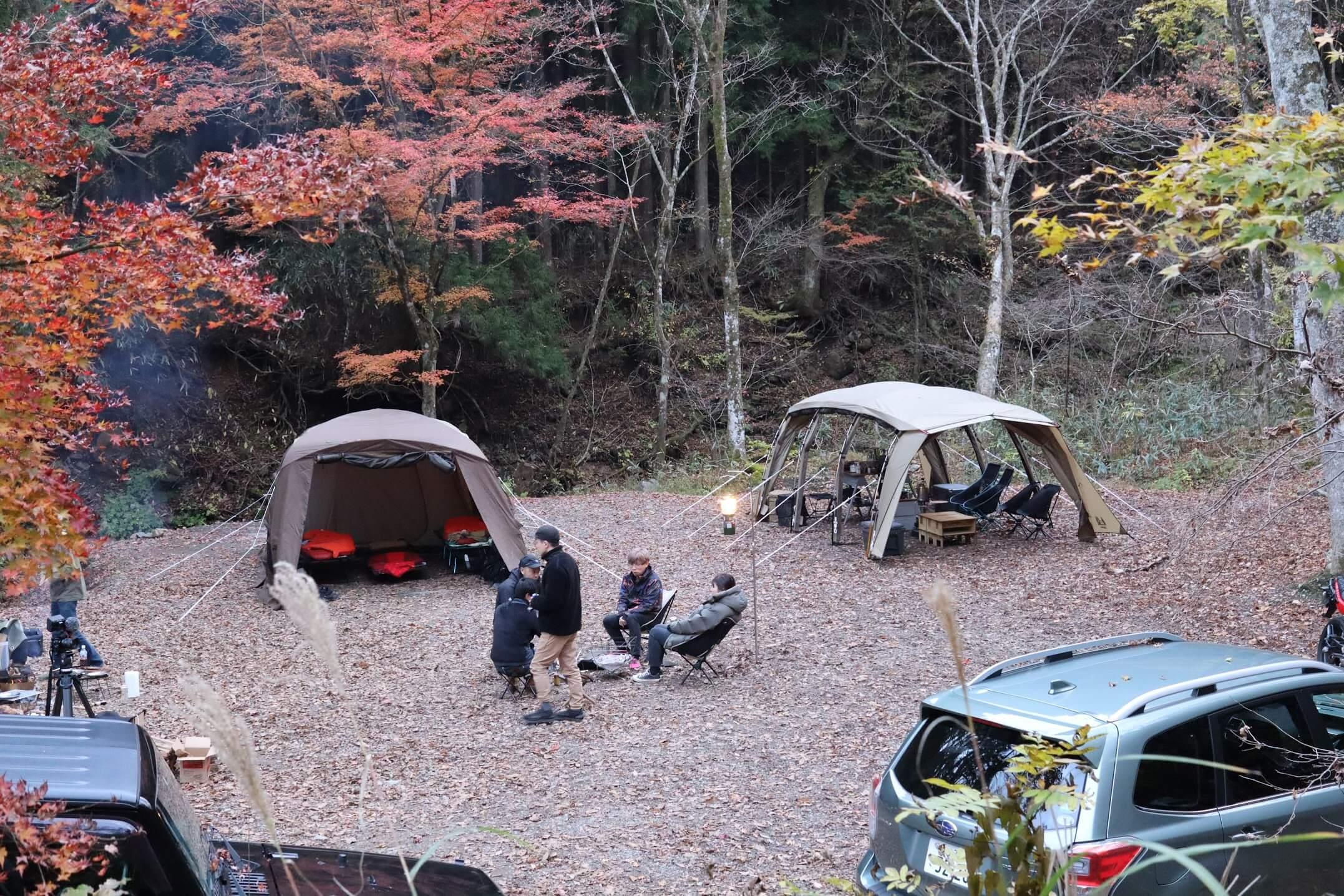道志の森キャンプ場 全面フリーサイト