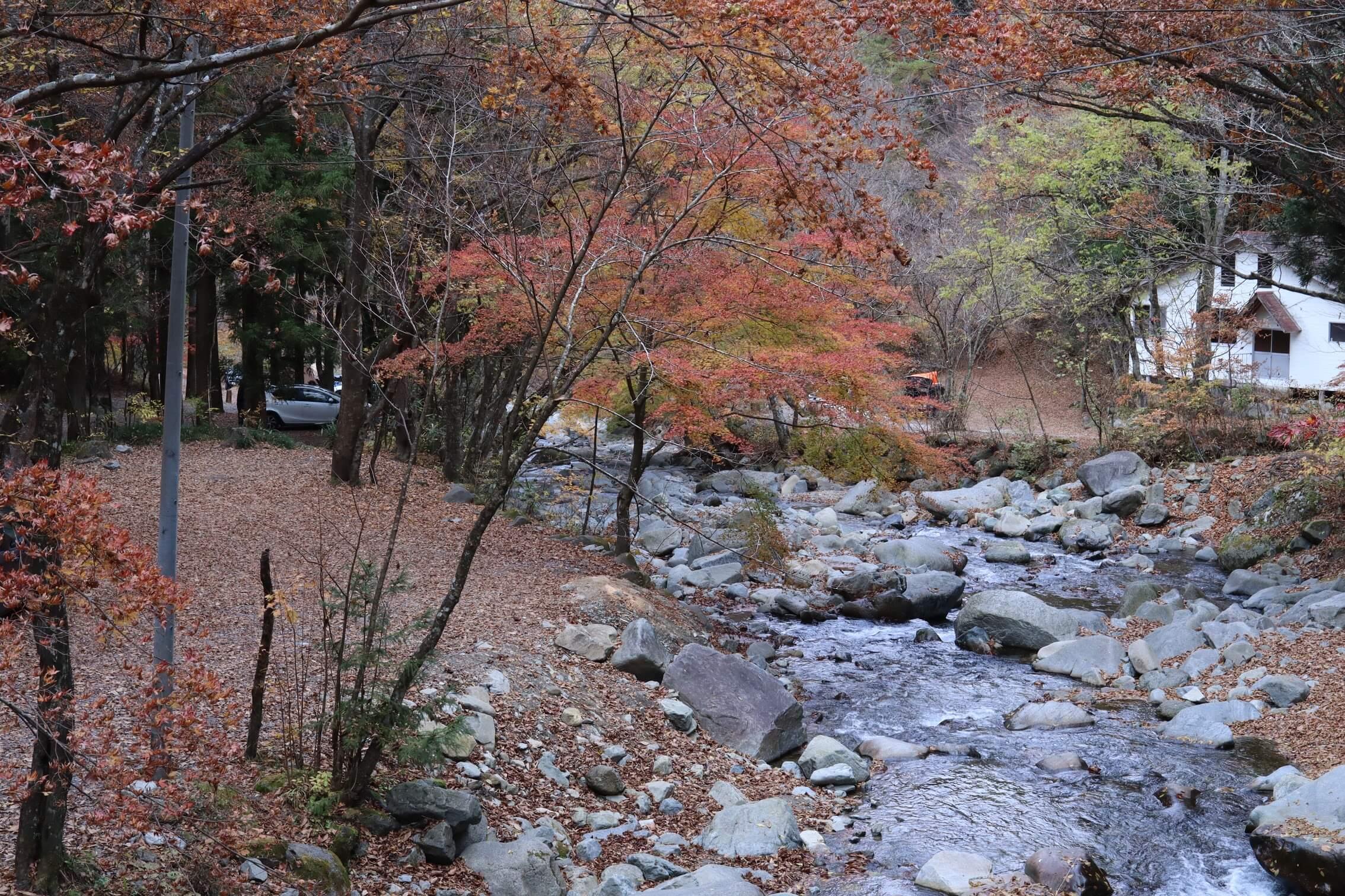 道志の森キャンプ場 三ヶ瀬川